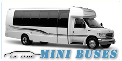 Mini Bus rental in Austin, TX